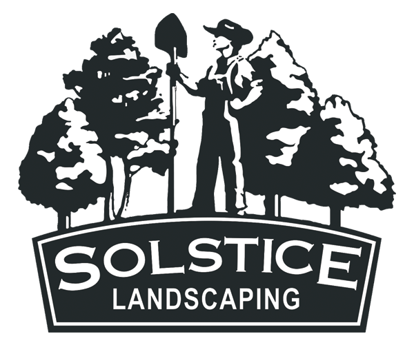 Solstice Landscape