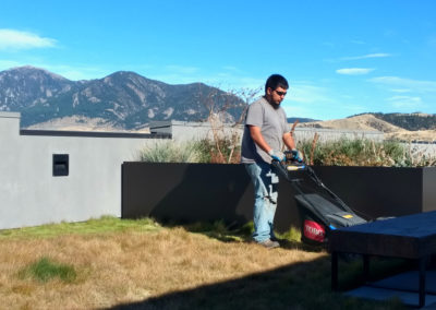 Mowing and Rooftop Garden Service - Downtown Bozeman, Montana