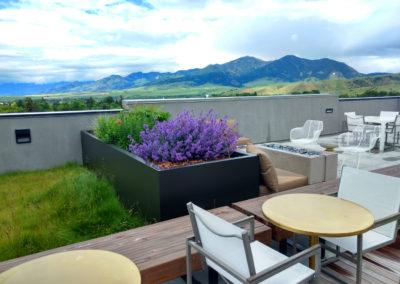 Rooftop Garden Maintienance - Bozeman, Montana