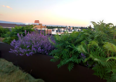 5 West Rooftop Garden Service - Downtown Bozeman